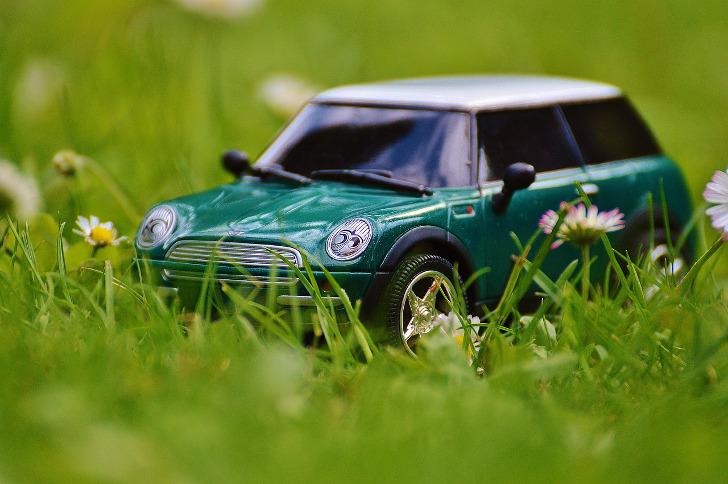 Das Bild zeigt ein Mini-Cooper Modell im Gras